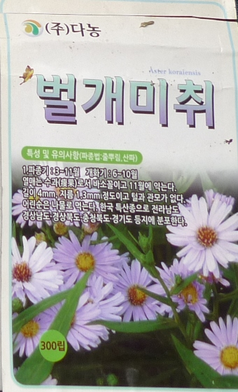 korean aster seed packet