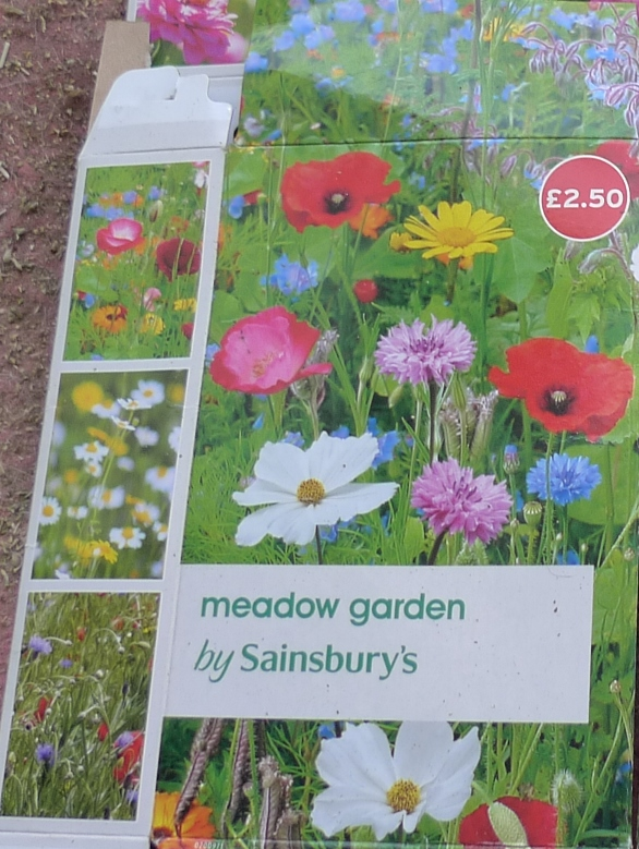 Sainsbury's meadow garden