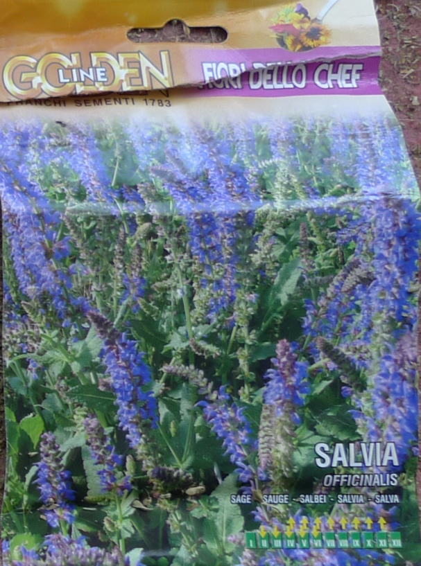 sage Franchi seed packet salvia officinalis