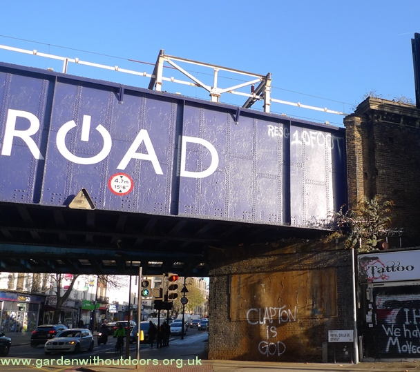 Camden Rd bridge buddleja