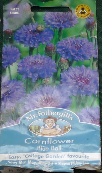 cornflower seed packet Mr Fothergills