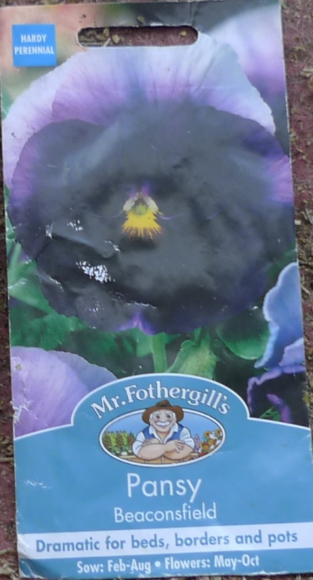 pansy Beaconsfield seed packet